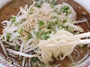 三国ラーメン塩見店 タレ豚骨ラーメン 麺拡大